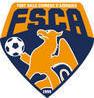 Logo Foot Salle Civrieux